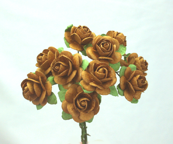 100 Roses 2cm Light Brown
