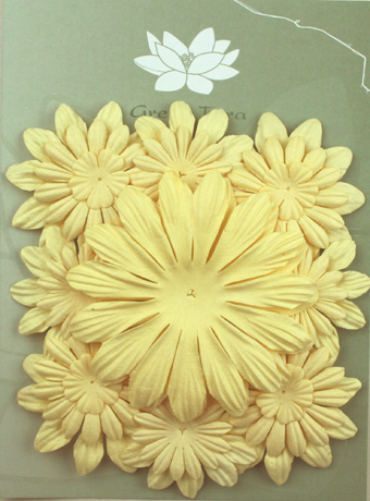 Pack of 22 mixed petals, Cream