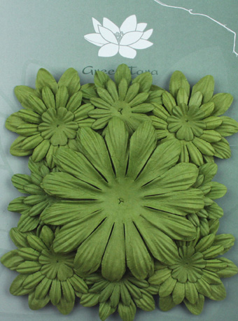 Pack of 22 mixed petals, Green