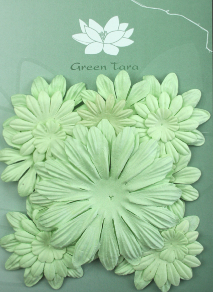 Pack of 22 mixed petals, Mint