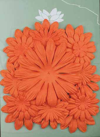 Pack of 22 mixed petals, Orange