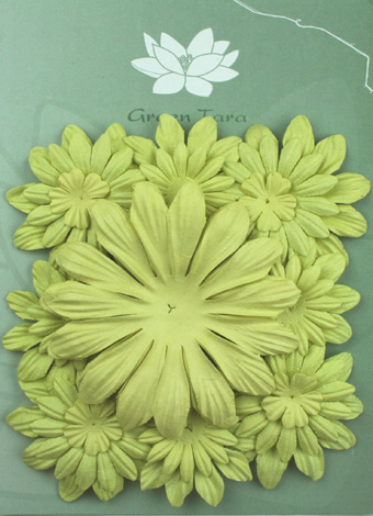 Pack of 22 mixed petals, Pale Green