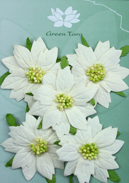 5 Large White Poinsettias, Green Centre