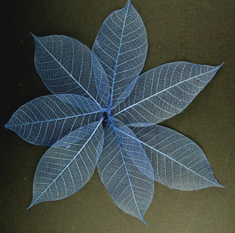 7.5cm Skeleton Leaves Blue Pack of 100