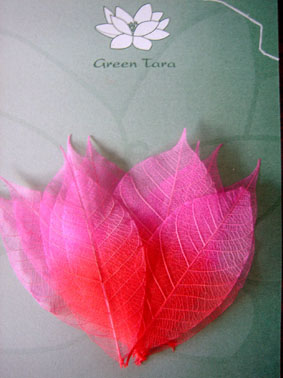 10 Dual Tone Rubber Tree Leaves Red/Pink