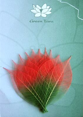 10 Dual Tone Rubber Tree Leaves Red/Green