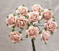 **NEW** 100 Roses 2cm Very Pale Pink