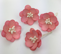 *NEW* 100 Cherry Blossoms 3cm Coral