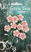 10 Roses 2cm Pale Pink