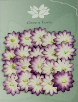 Pack 20 Violet/White Flowers