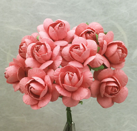 **NEW** 100 Roses 3cm Coral