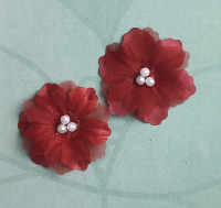 12 Forget me Not 4cm Red
