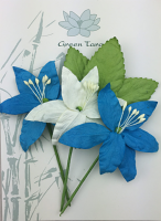 Lily Pack Teal White