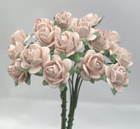 100 Roses 1cm Very Pale Pink