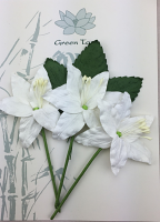 Lily Pack White