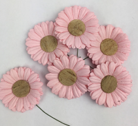 25 5cm Daisies, Pale Pink