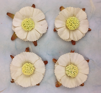 50 Paper Asters 3cm Ivory