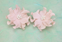 **NEW** 100 Very Pale Pink Apple Blossoms