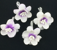 *NEW* 100 Cherry Blossoms 3cm White Violet