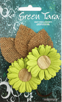 5cm Daisies - Pack of 2 with Burlap Leaves, Lime Green